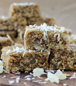 Healthy Tropical Oat Bars {Vegan, GF}