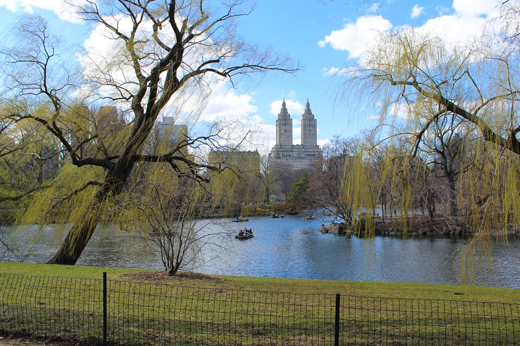 Thanksgiving 2014 - A Post about thankfulness and what I am particularly thankful for this year. Photo of Central Park New York City